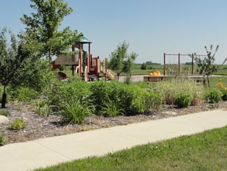 Eyota, Minnesota's Summerfield Park is landscaped with rain gardens thanks to Park Board members and other volunteers